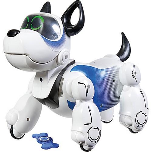 Blue Robot Dog