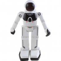 Program A Bot