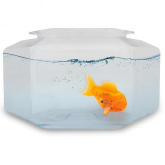 Hexbug Aquabot V2 Aves Son Aquarium (Couleur Aléatoire)