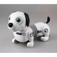 Dackel Junior robot chien télécommandé Ycoo