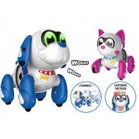Dog cat robots Ruffy and Mooko