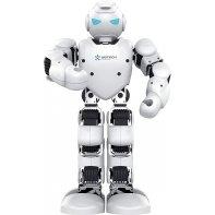 Ubtech Robot Alpha 1E Occasion
