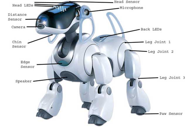 The return of Aibo, Sony's dog robot