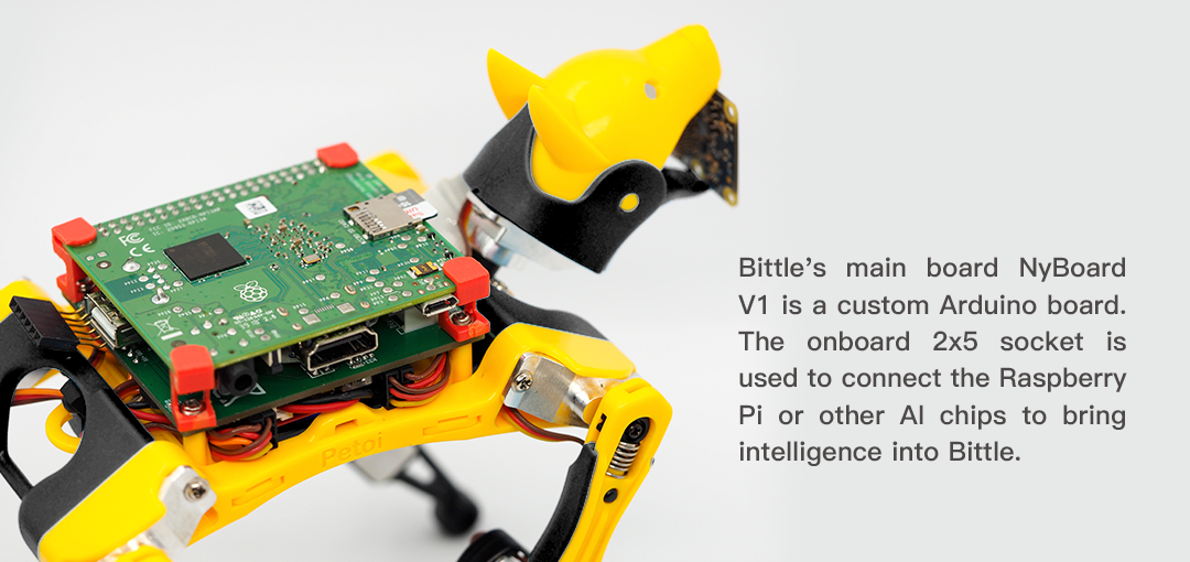 Components of Petoi Bittle Kit