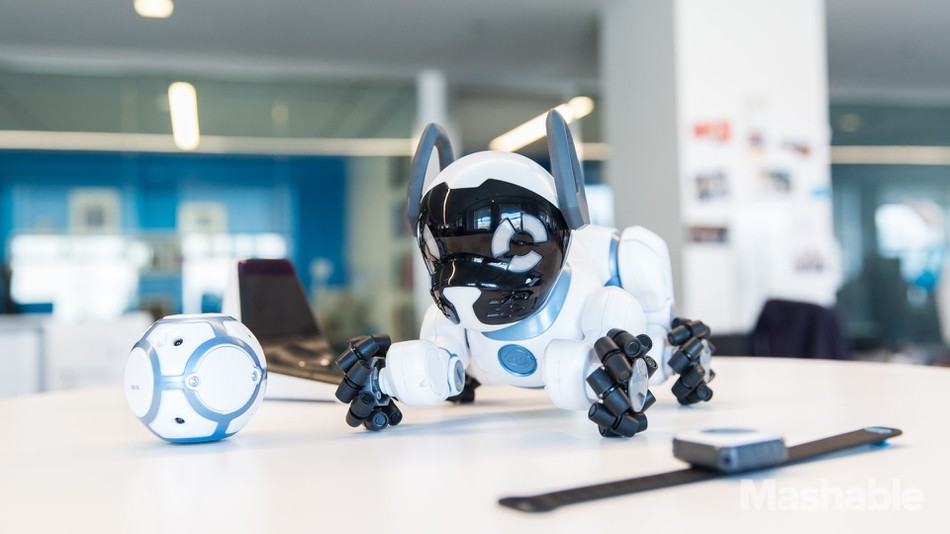 Robot chien intelligent CHIP