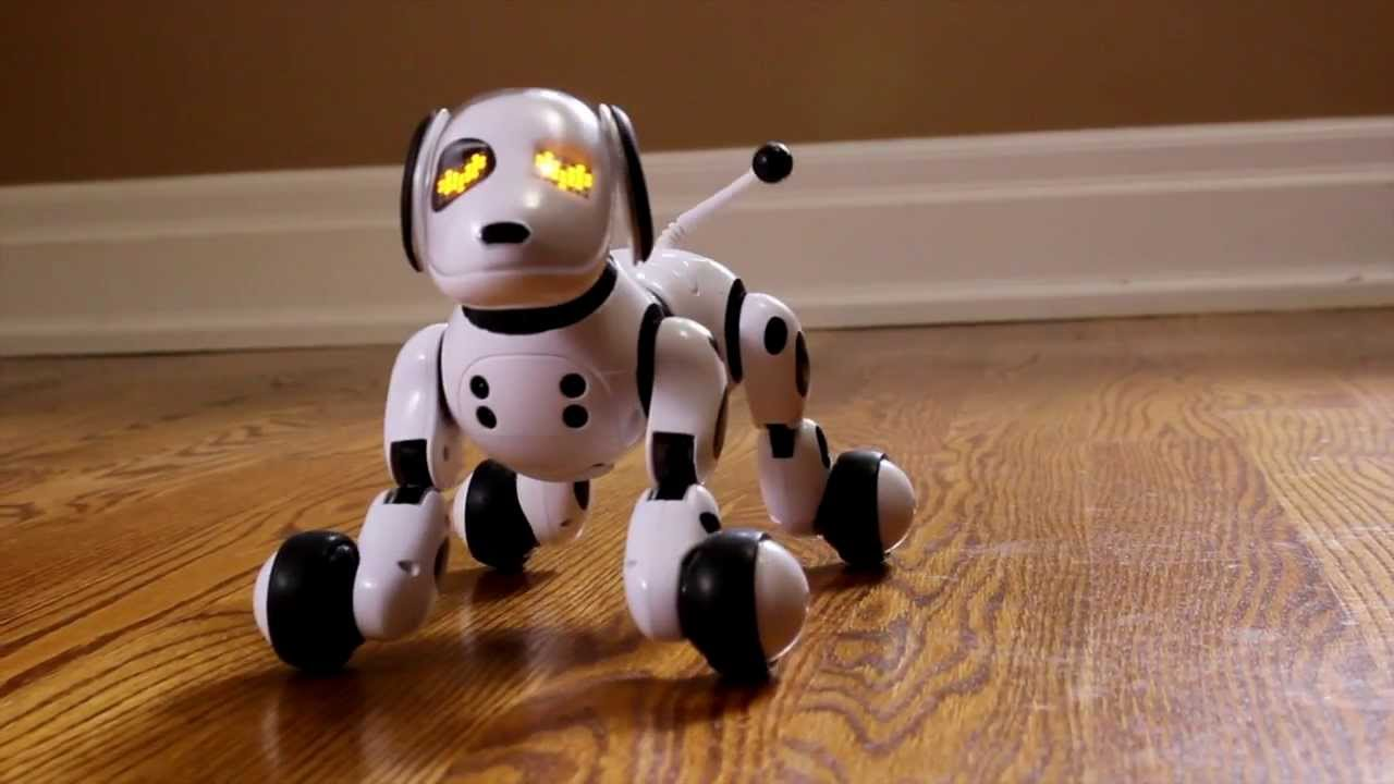 Zoom In Interactive Dog Cat Or Dinosaur Robots Toy Robots